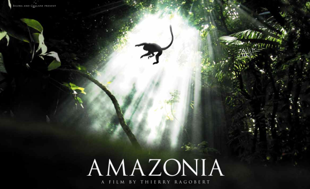 http://braziltheguide.files.wordpress.com/2013/08/amazonia.png